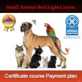 Small Certificate course payment plan